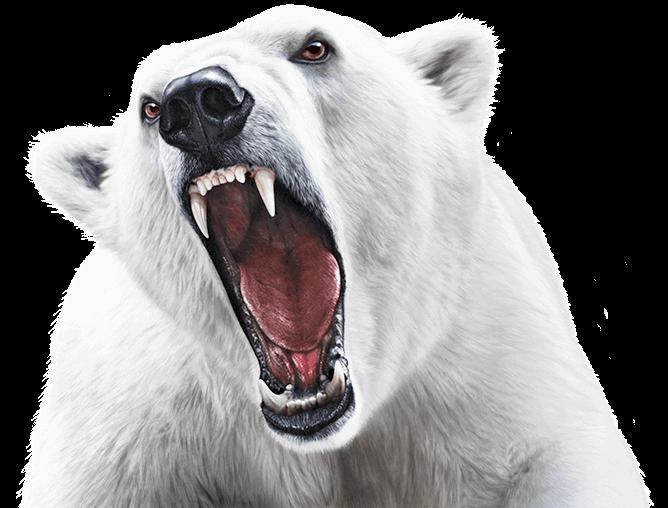Keylite Polar Bear